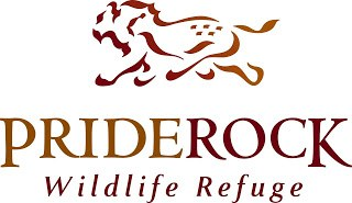 , PrideRock intern goes to Africa