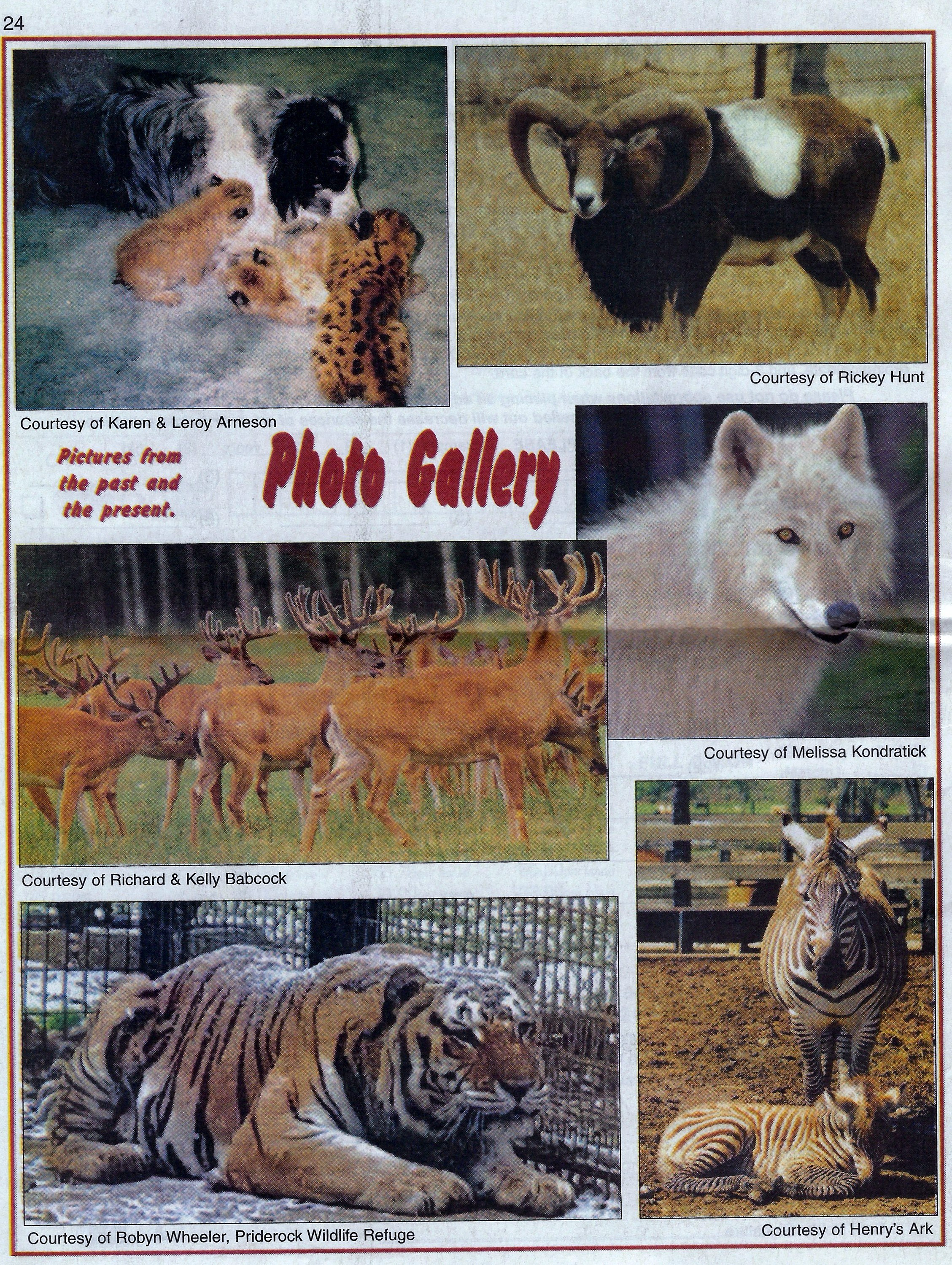 , Big Mike photo, Animal Finder's Guide, January 2017