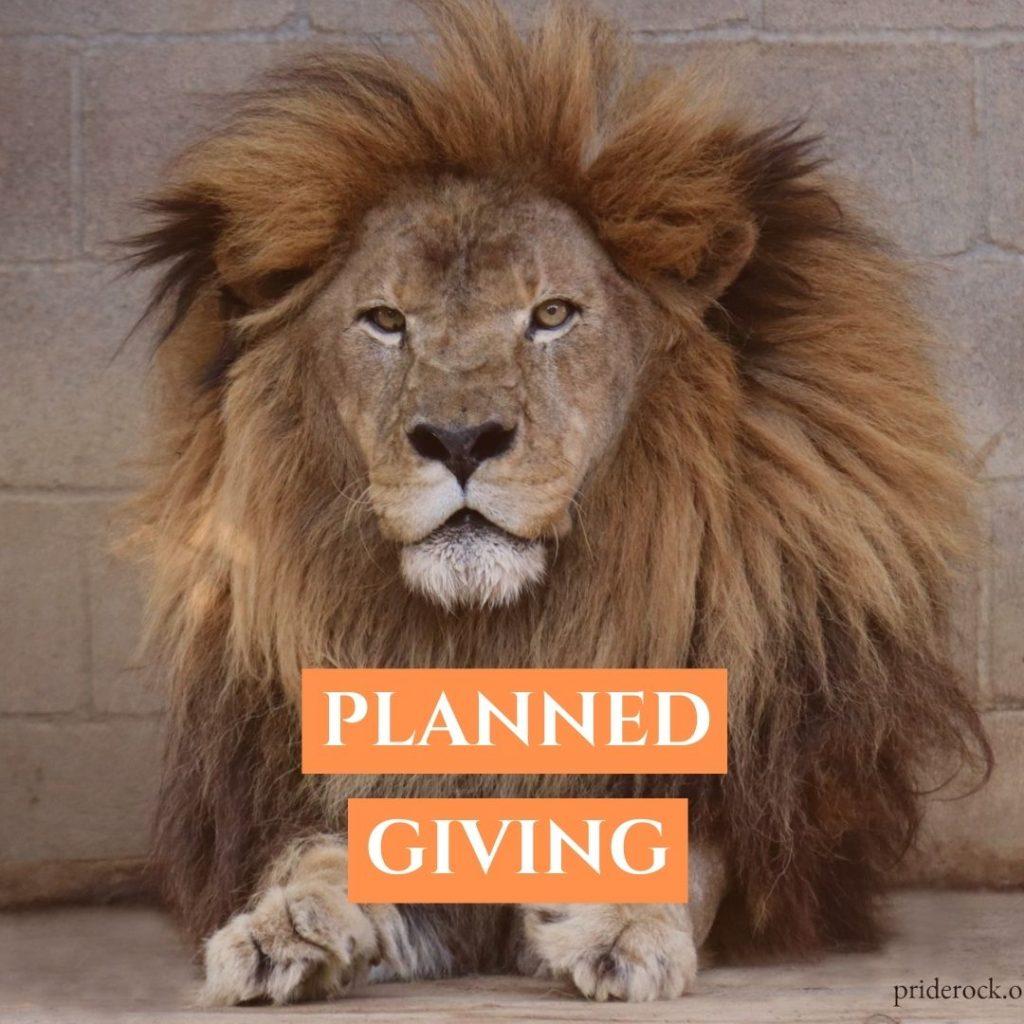 Donate, DONATE